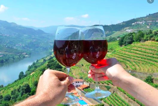 Wine tasting in the Alto Douro