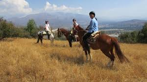 Accident-free horseriding excursion