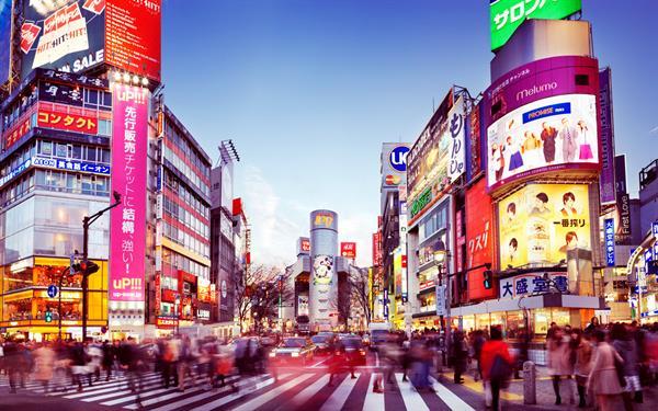 Tokyo Hyatt Honeymoon Nights