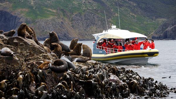 Bruny Island Cruise Tour
