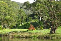The Tasmanian Arboretum, Devonport