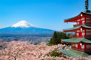 Kiira & Alex's Japanese Honeymoon Adventure - Honeymoon registry Japan