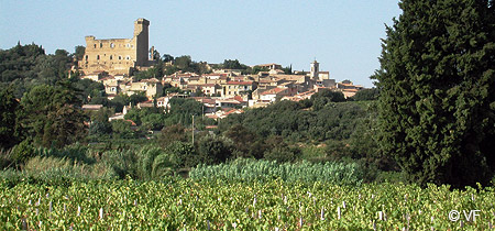 Winery tour of the Rhone Valley