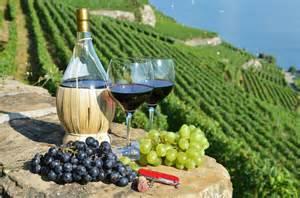 Bottle of Italian Wine