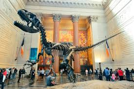 Entry - American Museum of Natural History