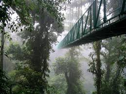 2 day Cloud Forest tour