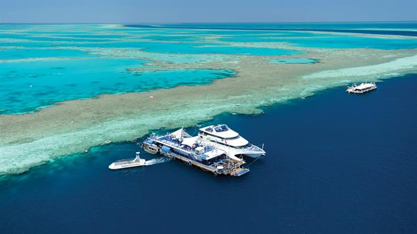 Great Barrier Reef and Reef World Day Trip For Gere