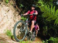 Mountain Biking - Taupo