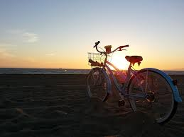 Passeio de Bicicleta / Bike ride