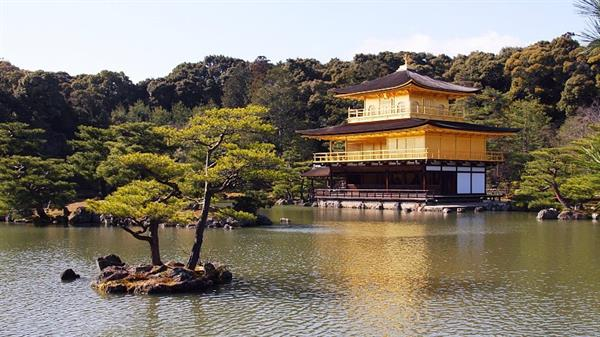Kyoto Morning Tour - Buffalo Tours
