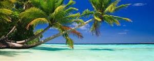 Brad & Gina's Honeymoon!! - Honeymoon registry The Islands