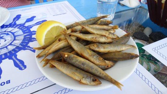 Heraklion Food & Wine Tour - Crete