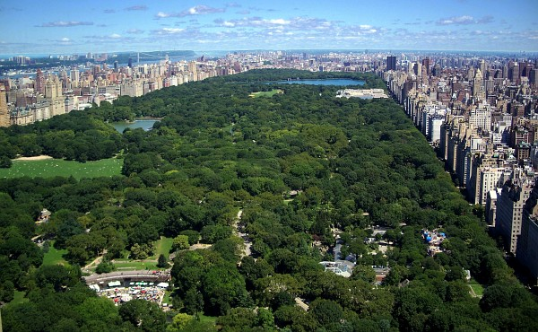 Picnic in central park NY