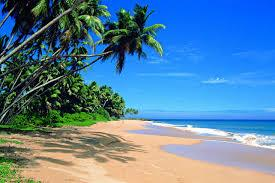 Welcome to Hao and Caroline's Honeymoon Registry! - Honeymoon registry Sri Lanka