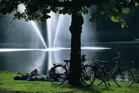 Picnic in Vondelpark in Amsterdam