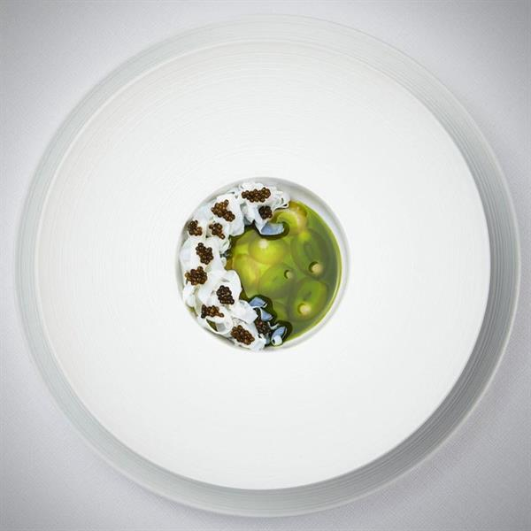 Michelin-Starred Dinner in Copenhagen