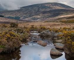 2 Nights in Wicklow Mountains