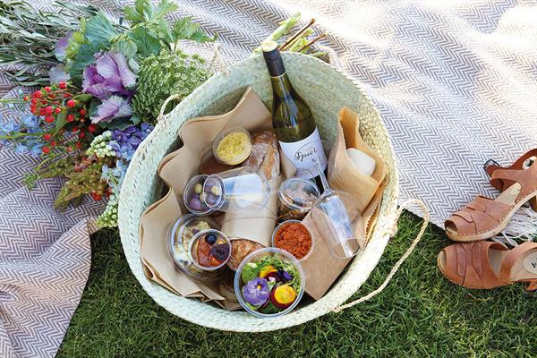 Picnic at Spiers Wine Farm