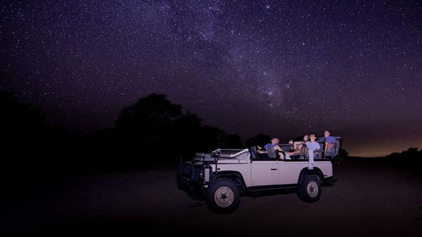 Night Game Drive