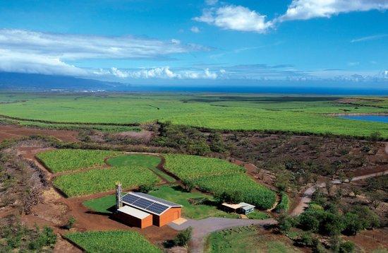 Hawaii Sea Spirits Organic Farm & Distillery
