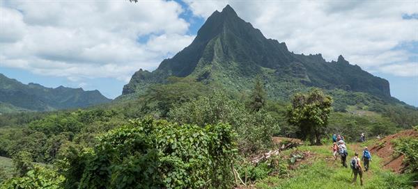 Tahiti 4WD Moutain Safari