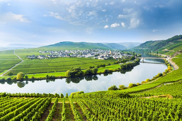 Moselle Wine Region Cycling Tour