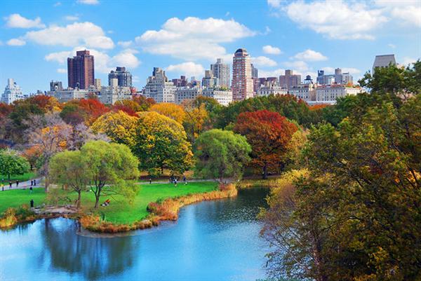 Bike Tour around Central Park