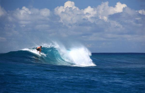Surfing trip