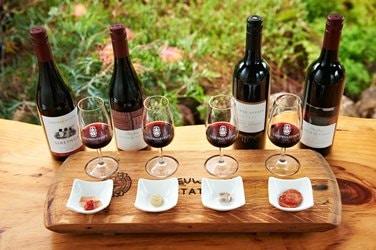 Gourmet Wine Tour - Margaret River