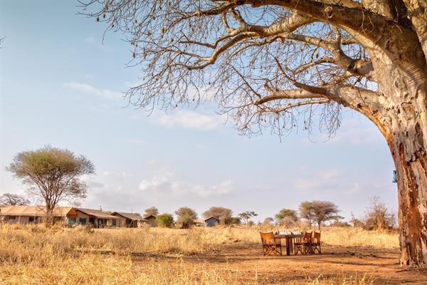2 Nights at the Tarangire Ndovu Camp