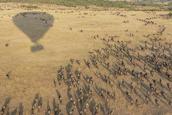 Private Hot Air Ballon Safari in the Serengeti