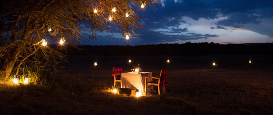 Private Dinner in the Bush