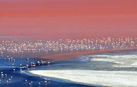 Salt Flats tour - Bolivia