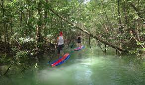SUP Paddle boarding tour - Costa Rica