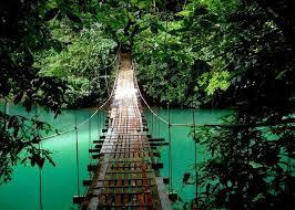 Cloud Forest tour - Costa Rica