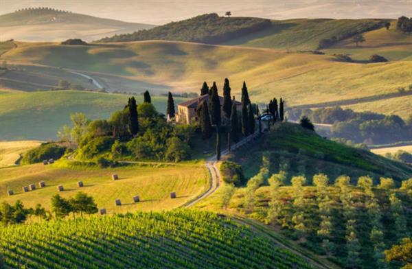 Small-Group Wine Tasting Experience in the Tuscan Countryside