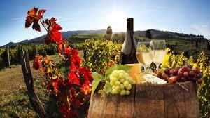 Wine Tour Chianti Tuscany