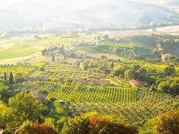 Accommodation - Tuscany - Montepulciano
