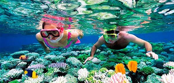 Cozumel Snorkeling Trip