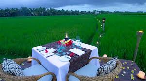 Romantic Dinner by the rice paddies