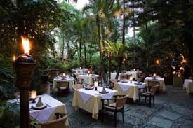 Gastronomic Dining Experience