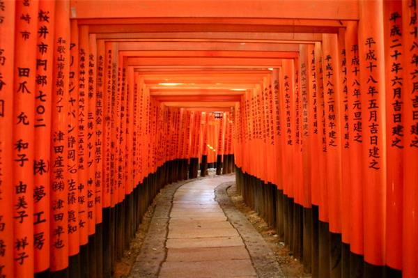 5 nights accommodation in Kyoto