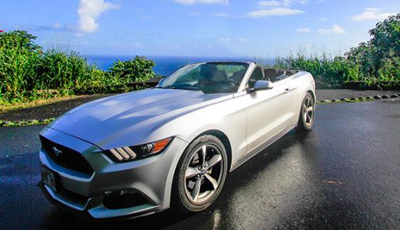 Convertible  Mustang Cruising