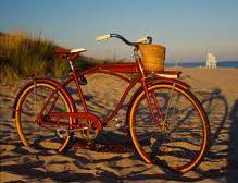 Biking around Davis (1)