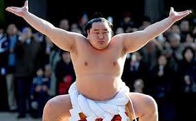 Sumo show