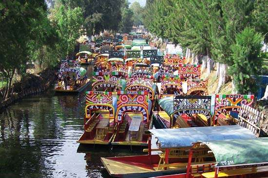 A trajinera (gondola) ride down the canals of Mexico City