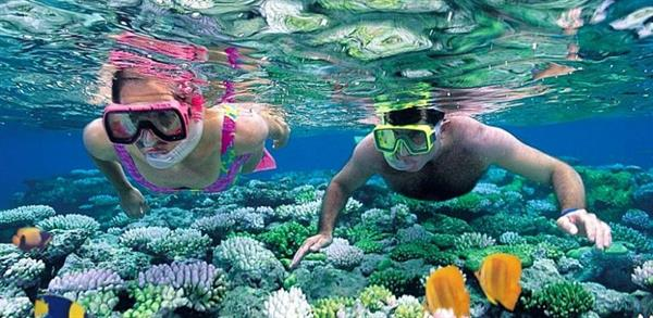Snorkelling off Hòn Mun Island