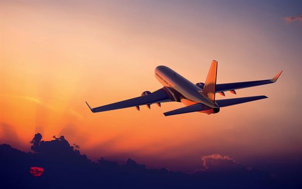 Flights - International & Domestic