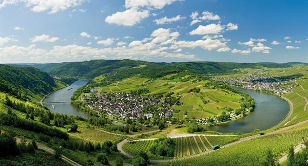 Rhine and Moselle Rivers Wine Region