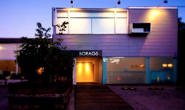 Dinner at Boragó